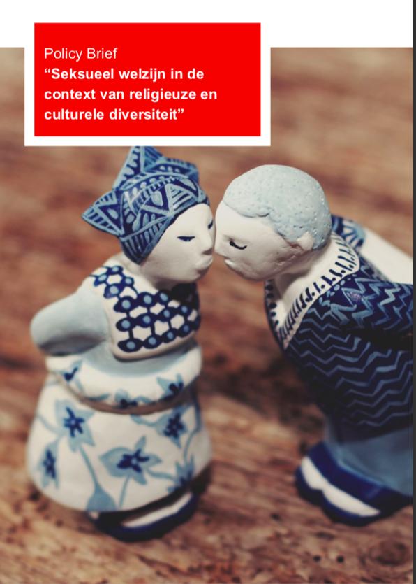 Coverfoto van policy brief. Verbeeld zijn twee Delfts blauwe kussende figuren